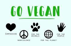 ca9bc6f7c9365d Die 36 besten Bilder von Vegan Leben - umweltbewußt