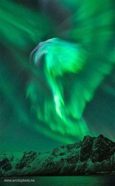 Aurora over Norway - Amazing Nature's photo on Google+