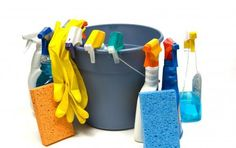 MasterClean Boston loves the job you hate. They provide residential and commercial cleaning services using non-toxic materials to ensure a safe and chemical-free space.