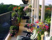22 Fabulous Container Garden Design Ideas for Beautiful Balconies and Backyard Landscaping - Hof Ideen Recycling Containers, Container Gardening, Small Houses On Wheels, Glass Fish Tanks, Ways To Recycle, Recycle Art, Recycled Crafts Kids, Small Space Interior Design, Handmade Gift Tags