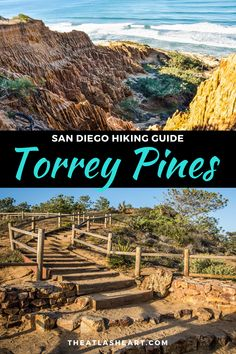 Looking for an easy hike in San Diego that offers drop dead gorgeous views of the glistening coastline? Look no further than the Torrey Pines Hike. Torrey Pines Hike, Torrey Pines State Reserve, San Diego Hiking, San Diego Travel, San Diego Vacation, San Diego Beach, Hiking Guide, Hiking Trails, Places To Travel