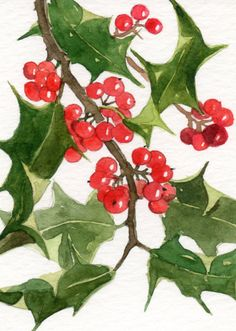 watercolor painting - Holly - Original  ACEO - christmas painting - christmas decor - christmas decorations. $10.00, via Etsy.