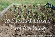 Gardeners and farmers live in tune with the seasons. We're intimately acquainted with the life cycles of food and how it arrives on our tables because we're involved in every step. Here are ten ways gardening parallels spiritual truth. 1. Prepare the soil. A random seed scattered here or there
