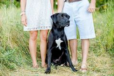 © Leo Timoshuk Photography  beautiful engagement session included rescue dog