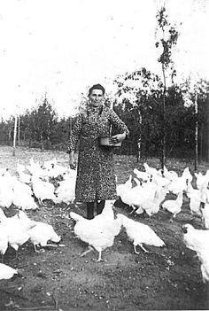 Eierboerin (Holland) - - My Bilder Old Pictures, Old Photos, Vintage Photographs, Vintage Photos, Agriculture, Old Photography, Egg Designs, Vintage Farm, The Old Days