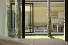 patio-houses-under-pines