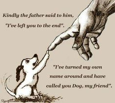 "A beautiful and comforting thought. As it is said ""all dogs go to heaven."" Source by dog dog memes dog videos videos wallpaper dog memes dog quotes dogs dogs pictures dogs videos puppies puppy video All Dogs, I Love Dogs, Puppy Love, Cute Dogs, Dogs And Puppies, Doggies, Dachshunds, Beagles, Chihuahuas"