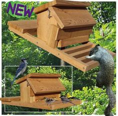 19-w3284 - Squirrel-proof Bird Feeder Woodworking Plan. - Woodworkersworkshop®…