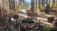 Natural playground setting