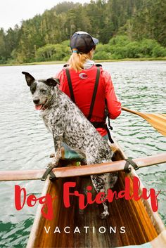22 Places to Vacation with Your Dog