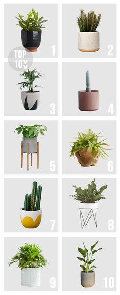 TOP 10 // Pots & Planters   Amber Interiors   Bloglovin'