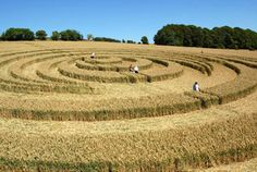 I've walked through crop circles with my mother when I was a little girl.