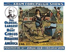 Adam Forepaugh Shows, Snake Woman Circus Poster
