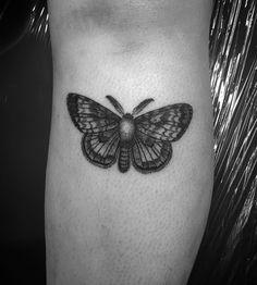 moth tat