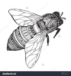 Hand Drawn Honey Bee In Zentangle Style. Black And White Vector ...