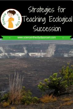 Ecological succession is a simple topic but for some reason students have a difficult time sometimes with the finer points or remembering the vocabulary. Here is how I used the 5 E''s to teach it