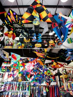 Get a kite and fly it on the beach! Kites Unlimited is an AWESOME kite store in Galveston, Texas
