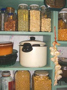 Good basic article on food storage from Backwoods Home.