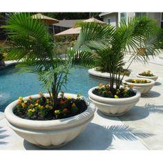 pool side planters