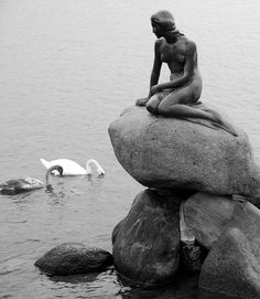 Little mermaid statue, Denmark