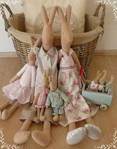 Tilda's rabbits