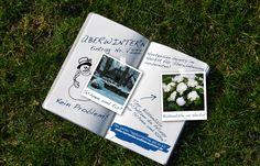 Tipps und Tricks zum Überwintern einer Hortensie. Vor allem junge Pflanzen brauchen zusätzlichen Schutz.