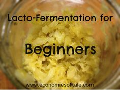 lacto-fermentation for beginners