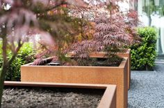 Houseplants That Filter the Air We Breathe Buy Andes Cube Corten Steel Planters The Pot Company Hydroponic Plants, Hydroponics, Garden Planters, Planter Pots, Planter Ideas, Weathering Steel, Corten Steel Planters, Inside Plants, Snake Plant