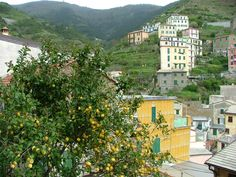 Have you visited the Cinque Terre region of Italy?