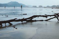 """Praia de Bertioga (05), pertencente ao ensaio fotográfico """"Praia de Bertioga"""". Capturada com uma Nikon Coolpix L810.   Fevereiro de 2017. #photo #photography #art #artpop #Brasil"""