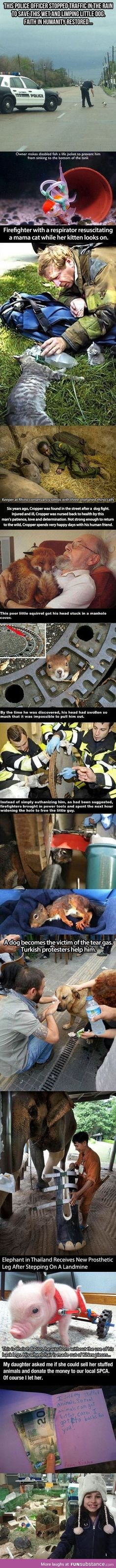 People Helping Animals Faith in humanity restored Animals And Pets, Baby Animals, Funny Animals, Cute Animals, Amor Animal, Faith In Humanity Restored, Tier Fotos, Funny Cute, Funny Pics