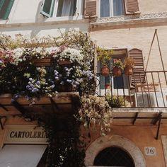 plantables: when in Rome - faith & books