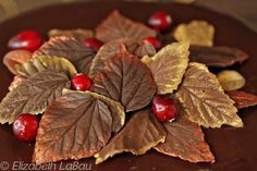 Chocolate Leaves are decorations that look just like delicate leaves. Learn how to make chocolate leaves and use them to top cakes, cupcakes, and more!