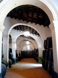 28 Ideas De Pasión Por Jerez De La Frontera Jerez Fronteras Andalucía