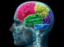 Den biokjemiske revolusjon innenfor psykiatri Den biokjemiske revolusjon innenfor psykiatri forskning startet i ca 1950 og varte fram til 1970. I denne perioden ble det utført mange tester og studier