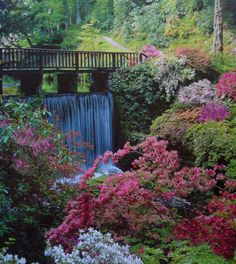 The Dell (River Hiraethlyn) at Bodnant Gardens, Wales