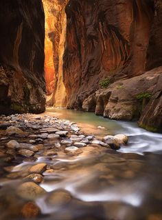 The Narrows at Zion National Park...we hiked this once and I'd love to see it again.
