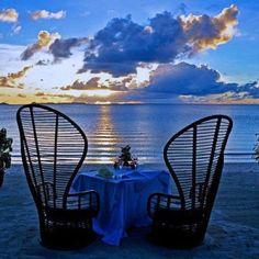 lovelydaydreamer73:  serenelilylove: Dinner for two