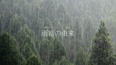 雨音の由来