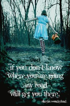 """If you don't know where you are going, any road will get you there"""