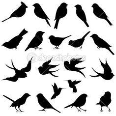colección de vectores de siluetas de aves — Ilustración de stock #24686055