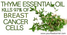 Thyme Essential Oil Shown to Kill up To 97 Percent of Breast Cancer Cells in JUST 72 HOURS!