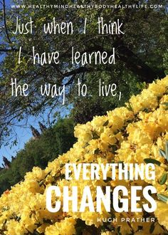 How to Embrace Change - Healthy Mind Body Life How to Embrace Change - Healthy Mind Healthy Body Healthy Life Health Tips, Health And Wellness, Health Fitness, Mental Health, Healthy Mind And Body, Healthy Life, Healthy Herbs, Embrace Change Quotes, Meditation Exercises