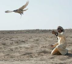 Sheikh Hamdan and falcons.....taken by ali_essa1