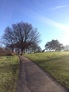 Hampstead Heath park, London