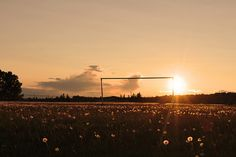 Soccer field and goal at sunset <3