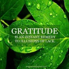 "❥ ""Gratitude is an instant remedy to illusions of lack. Gratitude Quotes, Attitude Of Gratitude, Gratitude Jar, Grateful Quotes, Practice Gratitude, Me Quotes, Motivational Quotes, Inspirational Quotes, Motivational Thoughts"