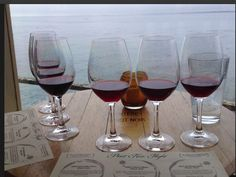 Taste of Monterey...  Wine tasting with a View..