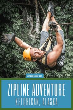 Visiting Ketchikan, Alaska, and looking for an adventure? Why not trip a zip-line excursion? We did and we had so much fun! Zipline Adventure, Adventure Travel, Alaska Cruise Tips, Tongass National Forest, Ketchikan Alaska, Norwegian Cruise Line, Virtual Travel, Alaskan Cruise, Road Trip Usa