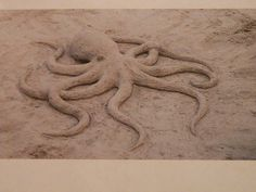 Octopus sand sculpture I made in a little competition. Was taken by someone's phone and then printed out and then I had to take a photo of the printout,. Beach Sand Castles, Octopus Art, Snow Sculptures, Snow Art, Beach Crafts, Kids Crafts, Environmental Art, Beach Art, Beach Photos